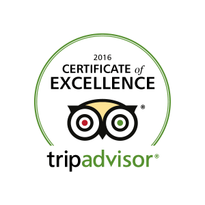 trip advisor logo 2016